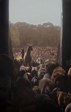 Director Darren Aronofsky Brings Noah's Ark To Life Without Live Animals: http://onegr.pl/1pA7Qu9