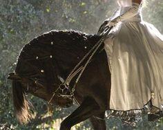 Side Saddle Dreaming... Lovely <3