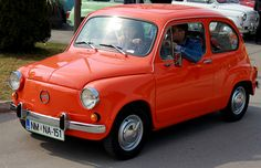 Fiat 600, Joy Ride, Bmw Cafe Racer, Fiat Abarth, Steyr, Vw Bus, Cars And Motorcycles, Vintage Cars, Classic Cars