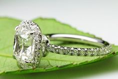 Cushion Cut Diamond Ring by David Klass Jewelry Cushion Cut Diamond Ring, Cushion Cut Diamonds, Halo Rings, David, Wedding Rings, Engagement Rings, Jewellery, Enagement Rings, Jewels