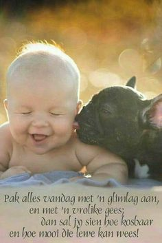 Baby And French Bulldog Best Friends Are Almost Too Cute To Handle Dogs And Kids, Animals For Kids, Animals And Pets, Baby Animals, Cute Animals, Funny Kids, Cute Kids, Cute Babies, French Bulldog Puppies
