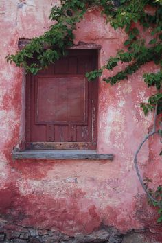 Pantone Color of the Year 2015 - Marsala Old Windows, Windows And Doors, Marsala, Murs Roses, Ville Rose, Pink Houses, Dog Houses, Old Doors, Everything Pink