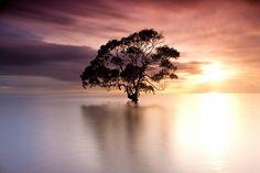 Sunrise, Nudgee Beach, Australia