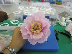 """My completed sugar peony"" from Delicious Cake Design - pretty impressive!!"