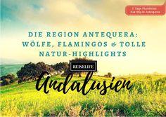 Die Region Antequera in Andalusien: Erlebe tolle Naturabenteuer und viele Sehenswürdigkeiten.