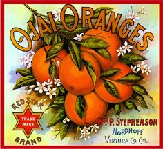 Beautiful Vintage Orange Crate Label I posted on my blog today!