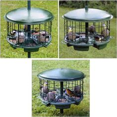 Great prices on your favourite Gardening brands, and free delivery on eligible orders. Bird Tables, Amazon, Garden, Outdoor Decor, Outdoors, Home Decor, Amazons, Garten, Outdoor