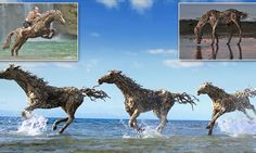 Stunning!  Artist James Doran-Webb creates life-size sculptures of horses out of DRIFTWOOD