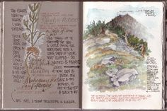 via Sketching in Nature: Page from Gay Kraeger's Journal (A Hike in Death Valley)