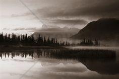 Reflection - Sepia - Fototapeten & Tapeten - Photowall