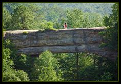 43 Best Red River Gorge Natural Bridge Amp Daniel Boone