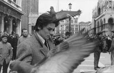 Alain Delon, Piazza S. Marco, Venice, 1962 by Jack GAROFALO 3