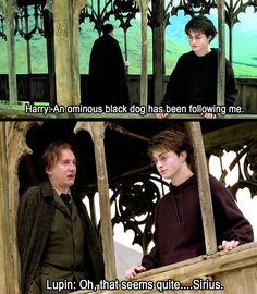 When you realise that if Harry had been a bit more open, most books would have been over in a few lines. -In other news, NOW IS NOT THE TIME REMUS. Harry Potter Puns, Harry Potter Universal, Harry Potter World, Lupin Harry Potter, Scorpius And Rose, Yer A Wizard Harry, The Marauders, Film Serie, Looks Cool