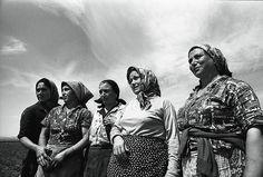 """Prorogata fino al 16 aprile la mostra sui """"lavoratori del cibo"""", che racconta i mestieri tipici delle cascine milanesi, le condizioni di vita e di lavoro, le lotte per i diritti e le trasformazioni della campagna (Silvestre Loconsolo, Raccoglitrici di pomodori (1965), Archivio del Lavoro)"""