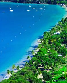 Megan's Bay, St. Thomas, U.S. Virgin Islands.  Yes, it really is this beautiful.