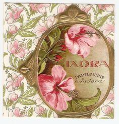 artemesia-violette:  Art Nouveau perfume label