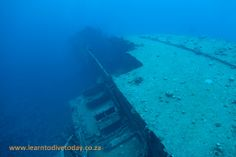 Dive sites (Red Sea): El Miniya - located just off Hurghada, Egypt Red Sea Diving, Hurghada Egypt, Airplane View