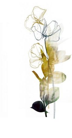 Abstract flower by nebo peklo ink and pen Digital manipulation of ink drawings Nebo Peklo watercolor flowers (by Emili Neme? Abstract Watercolor, Watercolor And Ink, Watercolor Flowers, Watercolor Paintings, Abstract Art, Black Abstract, Watercolor Artists, Watercolours, Painting & Drawing