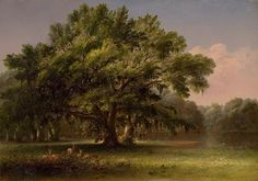 THOMAS ADDISON RICHARDS (1820-1900) Live Oaks in South Carolina, 1858  Oil on canvas, 21 1/8 x 30 inches