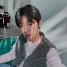 Son Dongpyo Produce X 101