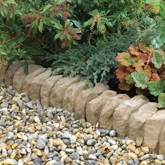 1000 images about edging on pinterest landscape edging for Unique garden border ideas