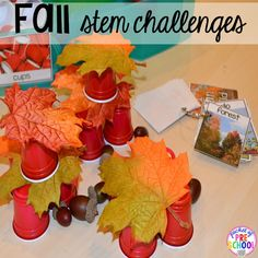 Pre-K and Kindergarten fall activities. Fall Preschool Activities, Stem Activities, Teaching Activities, Kindergarten Stem, Tree Study, Math Literacy, Stem Challenges, Dramatic Play, Autumn Theme
