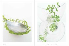 'Overgrown: Plants are Spreading' by Fuyuko Kogi, Shiho Sato and Ayumi Nishimoto, as featured in Ex-formation by Kenya Hara