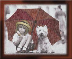 "Desgarga+gratis+los+mejores+gifs+animados+de+lluvia.+Imágenes+animadas+de+lluvia+y+más+gifs+animados+como+gatos,+gracias,+animales+o+risa"""