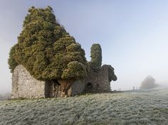A dusting of frost and a layer of mist cloak an old Irish church between Cloughjordan and Moneygall towns in County Tipperary. Tipperary is full of unexpected delights: castles, Swiss cottages, high crosses, and the longest cave system in Ireland. Photograph by Tomasz S., National Geographic Your Shot, December 25, 2014