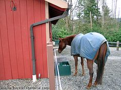 Fall Checklist for Preparing Your Horse Property for Winter