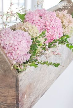 Beautiful pink hydrangeas in vintage toolbox. Could make this for a window box My Flower, Pretty In Pink, Flower Power, Beautiful Flowers, Hortensia Hydrangea, Pink Hydrangea, Hydrangeas, Hydrangea Macrophylla, Lilacs