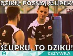 Zobacz zdjęcie Zabawni Ci siatkarze  w pełnej rozdzielczości Volleyball Team, Haha, Humor, Memes, Polish, Funny, Fitness, Sports, Life