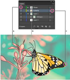 Info about Layers in Illustrator from Adobe