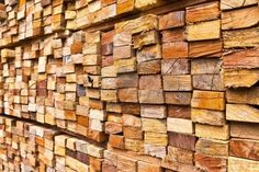 Ghana's forest reserves threatened by illegal timber dealers Wood Logs, Ghana, Stock Photos, Image