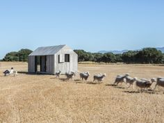 Casa modular transportable APH80: estructura fabricada con CNC, exterior de paneles de viruta e madera revestido con cemento, interior de paneles de abeto tintados en blanco, coste final 42.800€, no necesita obra, produccion 100% nacional. Abaton Arquitectura, Madrid (2012).