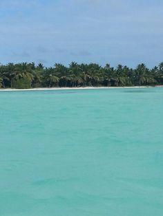 Saona Island, Punta Cana #DR #January/2014