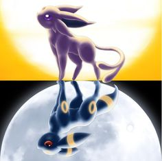 The sides of evee.