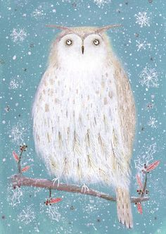 Anna Wadham owl illustration
