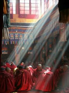 Monks bathed in sunlight.