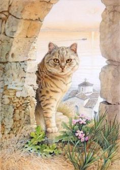 MINTAKA IN GREECE by LESLEY ANNE IVORY by MarkchicReviews