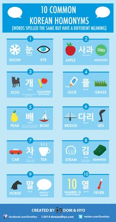 10 Common Korean Homonyms (동음 이의어)