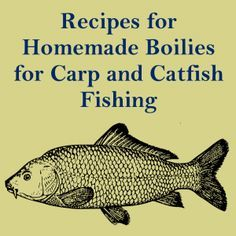 Recipe for Simple Homemade Boilies 3oz. Milk Powder 4oz. Wheat Germ 2oz. Fish Meal 3 Large Eggs 3-4 Drops Vanilla Extract Combine Dry ingredients thoroughly in a medium bowl. Beat eggs and vanilla extract in a separate bowl. Slowly combine dry mixture into the wet ingredients until