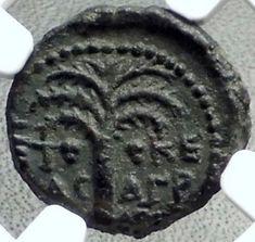 DOMITIAN 84AD Roman Coin Caesarea Maritima Judea Herod AGRIPPA II NGC i68541