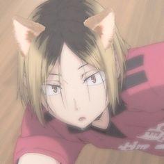 Anime Cat Boy, Gato Anime, Anime Guys, Neko, Chat D'anime, Kenma Kozume, Haikyuu Manga, Cute Anime Character, Cute Icons