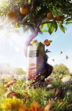 Organic Orange Juice by Leo Rocha, via Behance