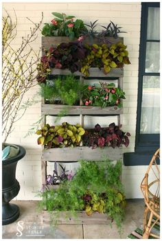 Transform old pallets into space-saving garden containers for your balcony, patio or front porch. A vertical pallet garden looks great both indoors and