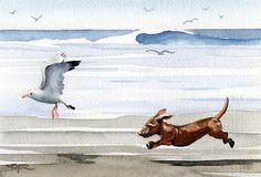 DACHSHUND At The Beach Dog Art Print Signed by Artist DJ Rogers. $12.50, via Etsy.