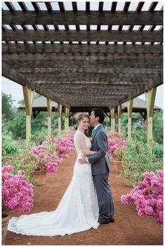 Fine Art Wedding Photographer based out of Dallas, TX. Available for international wedding. Clark Gardens, William Clark, Pavilion, Fine Art, Rose, Wedding Dresses, Bride Dresses, Pink, Bridal Gowns