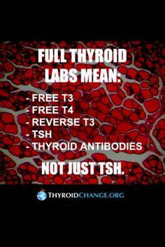 FULL LAB TESTS - THYROID DISEASE                                                                                                                                                                                 More