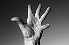 #fingers #folds #hand #joints #life line #lines #palm #skin #thumb